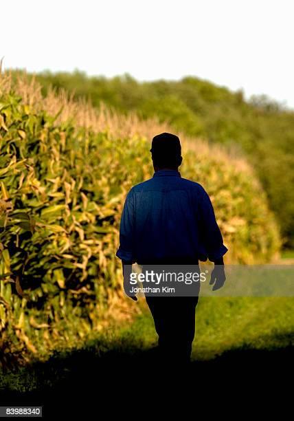 Wisconsin Corn Farmer