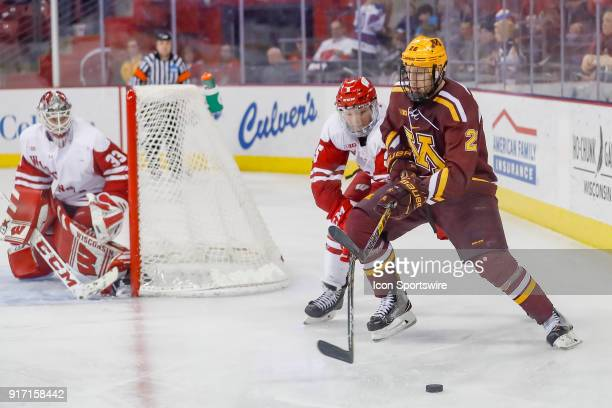 Wisconsin defenseman Tyler Inamoto and Minnesota defense Jack Sadek fight for the puck while Wisconsin goalie Kyle Hayton looks on during a college...