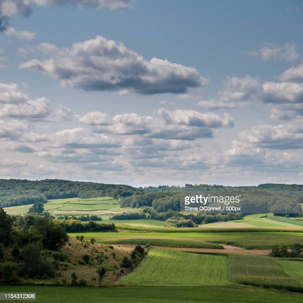 wisconsin fields - iron_county,_wisconsin stock pictures, royalty-free photos & images