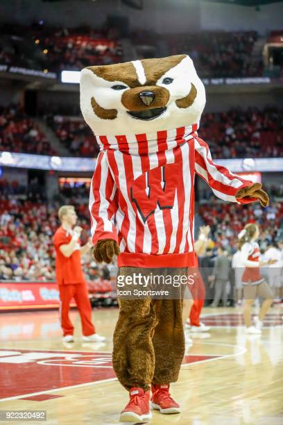 Wisconsin mascot Bucky Badger during a college basketball game between the University of Wisconsin Badgers and the University of Minnesota Golden...