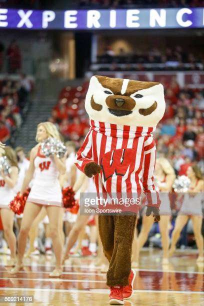 Wisconsin mascot Bucky Badger leads some cheers during an NCAA basketball game between the University of Wisconsin Badgers and the University of...