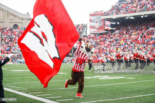 Wisconsin mascot Bucky Badger runs with the flag during a Big Ten football game between the University of Wisconsin Badgers and the Purdue University...