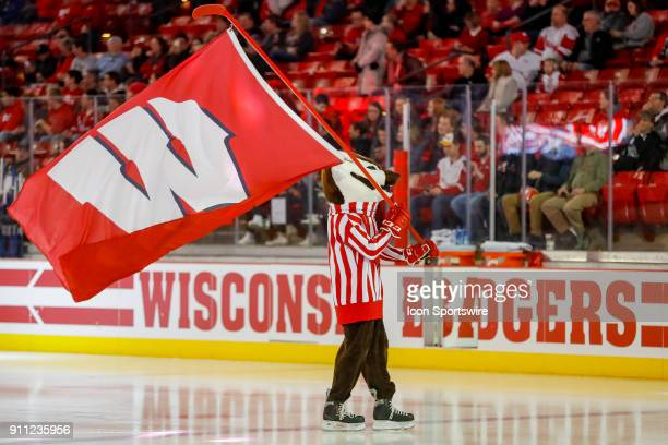 Wisconsin mascot Bucky Badger skates out with the Wisconsin flag during a college hockey match between the University of Wisconsin Badgers and the...