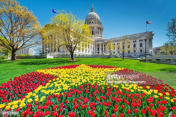 wisconsin state capitol - capital in spring - madison wisconsin stock pictures, royalty-free photos & images