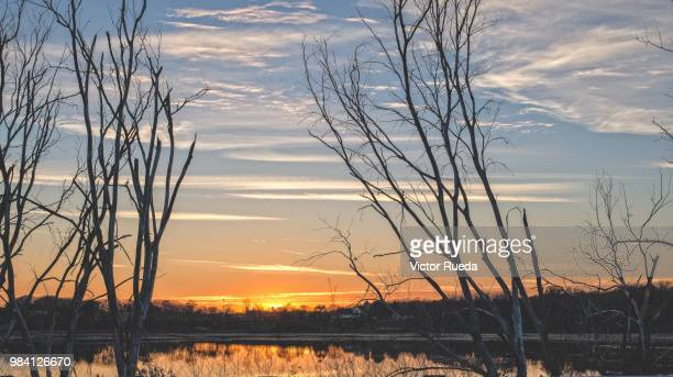 wisconsin sunset - staadts,_wisconsin stock pictures, royalty-free photos & images