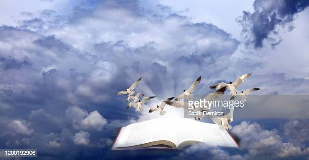 wisdom of freedom concept - knowledge is power stock pictures, royalty-free photos & images