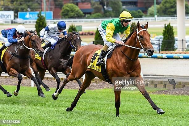 Wise Hero ridden by Damian Lane wins the Art Series Hotel Group Handicap at Moonee Valley Racecourse on November 26 2016 in Moonee Ponds Australia
