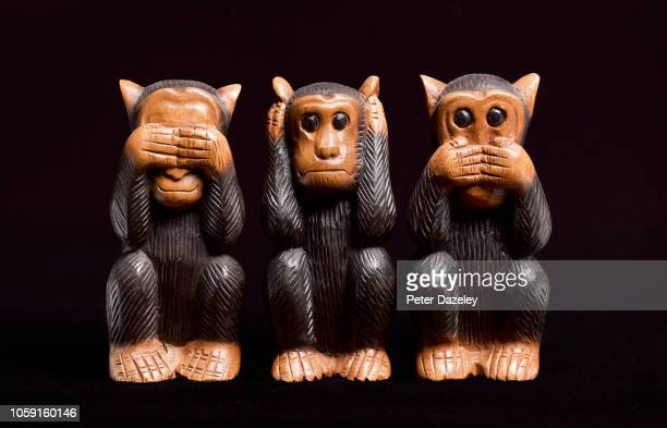 3 wise monkeys - ignoring stock pictures, royalty-free photos & images