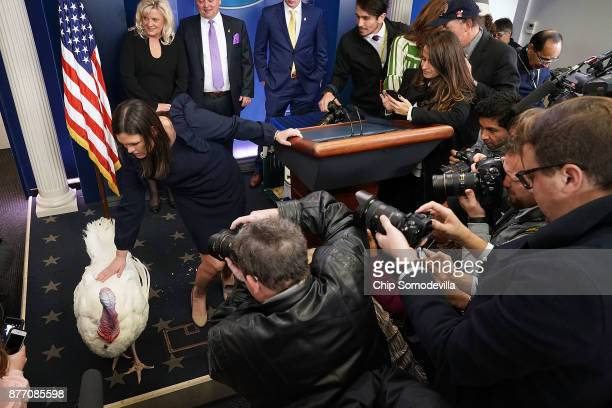 Wishbone the turkey is put on display for members of the news media with White House Press Secretary Sarah Huckabee Sanders in the Brady Press...