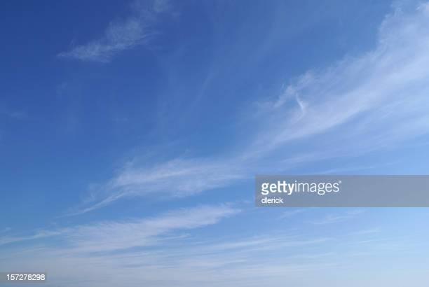 薄い雲が空を背景