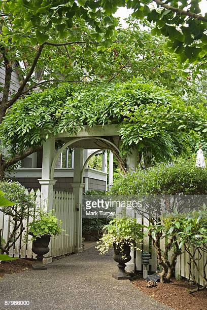 Wisteria covered arched entry