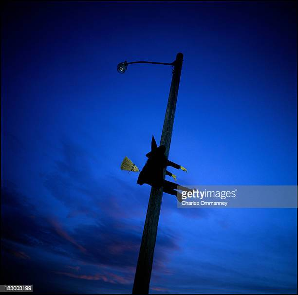 A witch adorns a lamp post on the October 17 2011 in Miami Florida ahead of the upcoming Halloween holiday