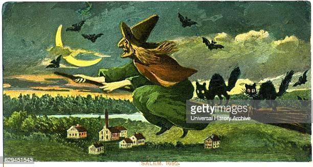 Witch on Broom with Black Cats and Bats Salem 1692 Postcard