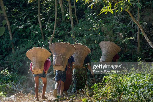 With a population of just over 20 the Mrus are an indigenous community inhabiting Arakan in Myanmar and the Chittagong Hill Tracts of Bangladesh,...