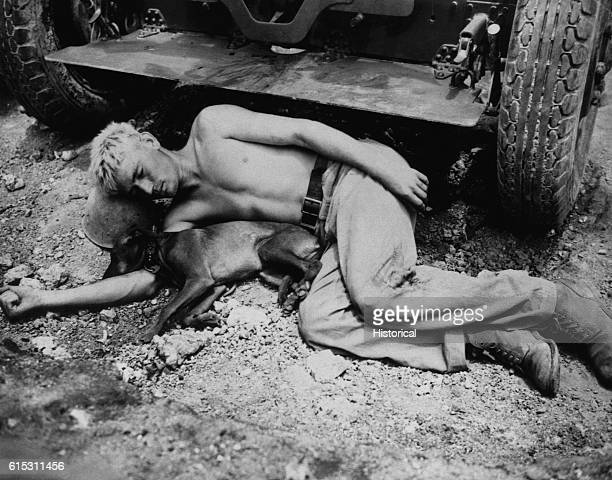 With a steel helmet for a pillow and the coral ground for a bed a 6th Division Marine Private John Emmons and his dog take a wellearned rest in front...