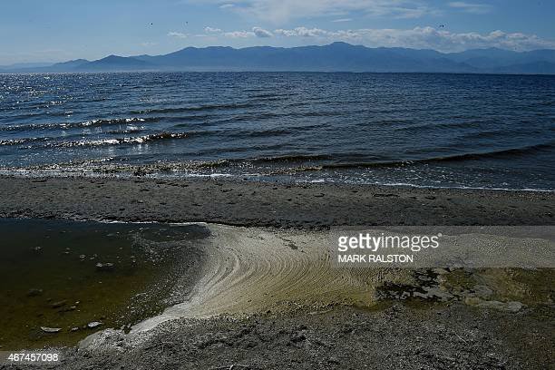 USEnvironmentWaterPollution Waves break on the shore next to the North Shore Yacht Club at the Salton Sea California on March 19 2015 California's...