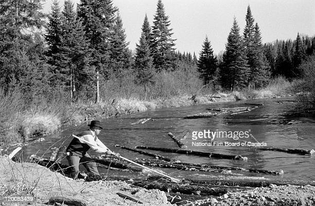 With his pike pole a log driver is trying to untangle logs that are jammed on the banks of a river Quebec Canada 1956 Photo taken during the National...