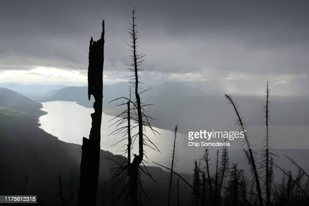 With Lake McDonald 4300 feet below trees burned by the 2017 Sprague Creek Fire stand along the steep trail to the Mt Brown Lookout Station September...