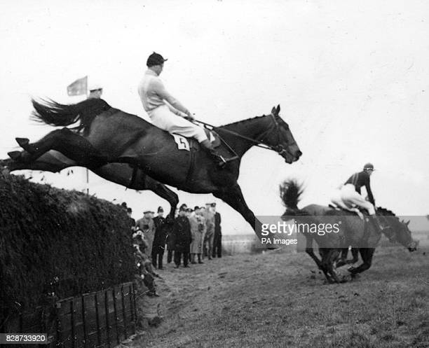 With no hint of the tragic ending awaiting fifty yards from the winning post the Queen Mother's horse Devon Loch with Dick Francis in the saddle...