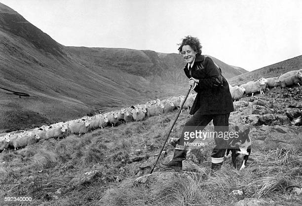 with only the mountains and the mist around her 29 year old Agnes Wilson from Bodesbeck near Selkirk goes about her daily job For Agnes is one of the...