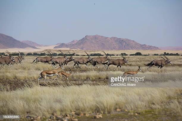 With Paul And Luana Belmondo In Namibia Paul BELMONDO et son épouse Luana à la découverte de la Namibie à bord du SUV Skoda Yeti 20 TDI 4 x4...