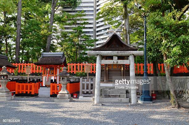 CONTENT] With seemingly endless arcades of vermilion torii spread across a thickly wooded mountain this vast shrine complex is a world unto its own...