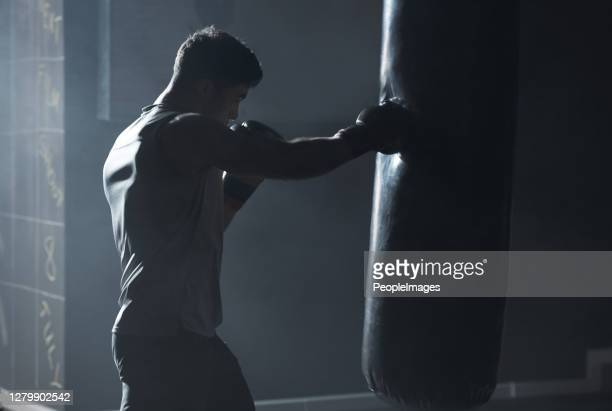 with self discipline comes success - boxing stock pictures, royalty-free photos & images