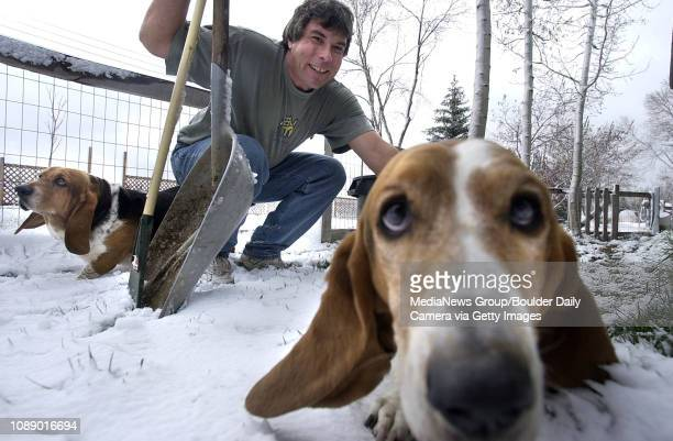 With shovel and rake in hand Mike Rubin greets two basset hounds before picking up their poop in the back yard of a residence in Gunbarrel Monday...