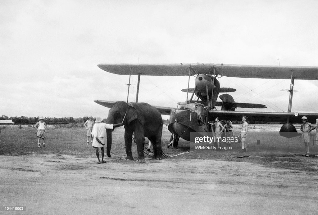 With The Fleet Air Arm In India, June 1944 : News Photo