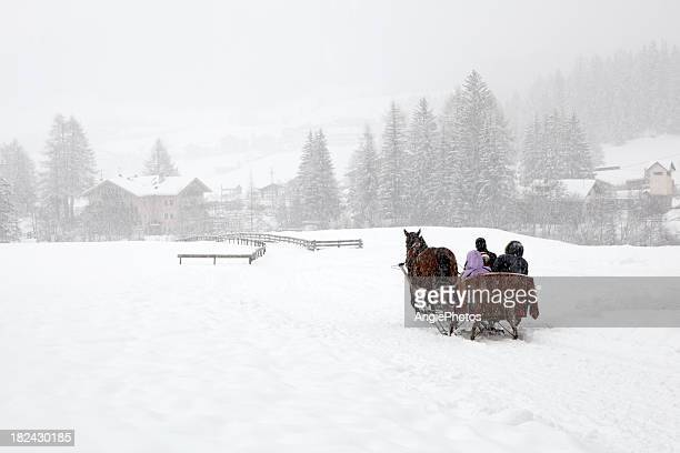 with the sleigh through winter wonderland - sleigh stock photos and pictures