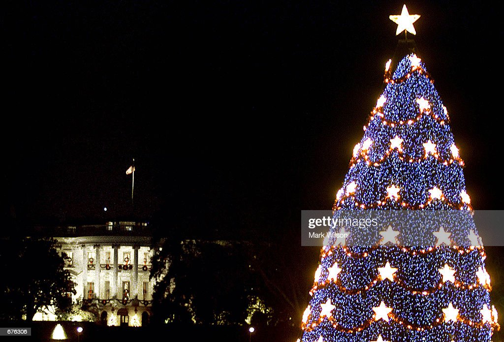 National Christmas Tree in Washington : News Photo