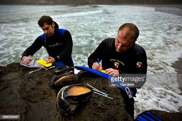 MENDOCINO CA – OCTOBER 2008– With their sea snails popularly called abalone sitting on the rocks in front of them Kevin Porzio left of Eureka and...