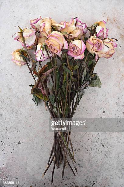 Withered bunch of roses on a grey stone slab