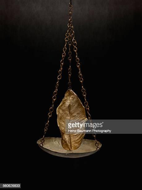 withered leaf on black background - heinz baumann photography stock-fotos und bilder
