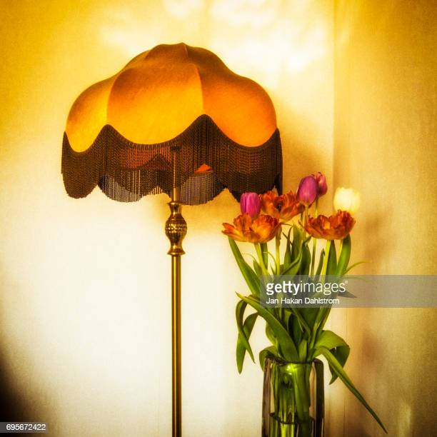 Withering tulips and lamp