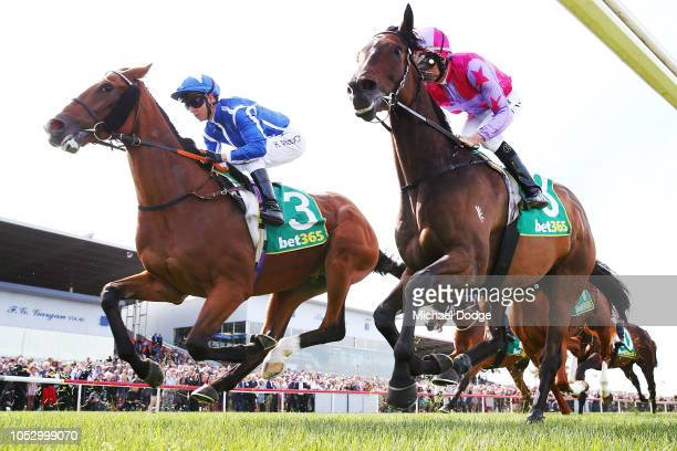 Withhold, ridden by Jockey Kerrin McEvoy, on the first lap of race 7 the Geelong Cup during Geelong Cup day at Geelong Racecourse on October 24, 2018...