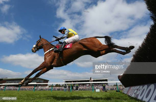 Witness In Court ridden by Noel Fehily clears the last fence on their way to winning the Marie Turner Easter Bonnet Memorial Novices' Limited...
