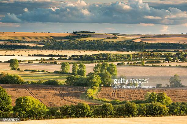 Wittenham Clumps, Thames Valley, Oxfordshire, England, UK