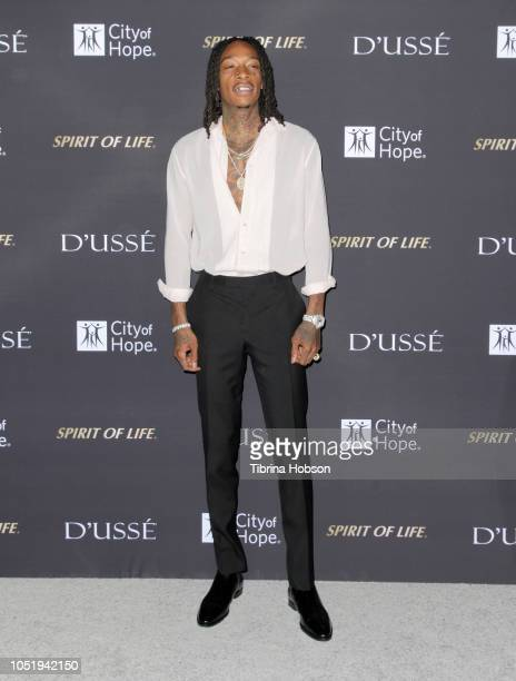 Wiz Khalifa attends the City of Hope Gala on October 11 2018 in Los Angeles California