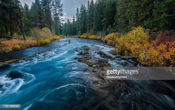 wizard falls on the metolius river autumn in oregon - deschutes national forest stock pictures, royalty-free photos & images