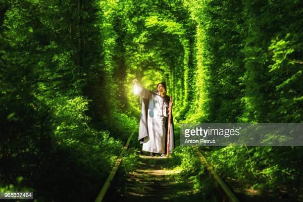 wizard with a lantern in a tunnel of green forest - ウクライナ トンネル ストックフォトと画像