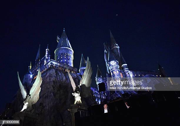 Harry Potter Cameraman : 60 top hogwarts pictures photos & images getty images