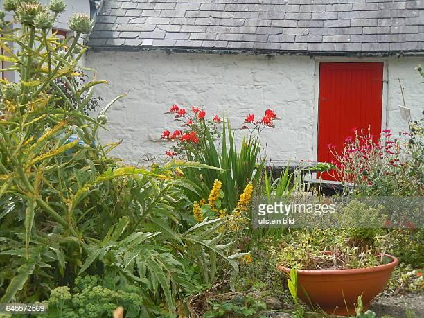 Wohnhaus mit roter Tür und Garten aufgenommen am 22 Juli 2015 in der Kleinstadt Adare bei Limerick