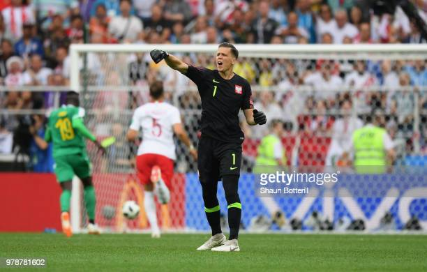 Wojciech Szczesny of Poland reacts after Mbaye Niang of Senegal breaks to score his team's second goal during the 2018 FIFA World Cup Russia group H...