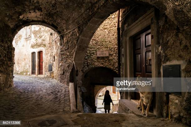 wolf watches girl approach - castel del monte foto e immagini stock