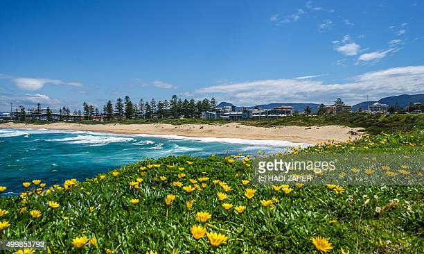 Wollongong South Beach
