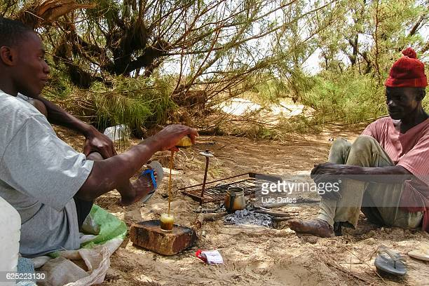 wolof men making tea - dafos stock photos and pictures