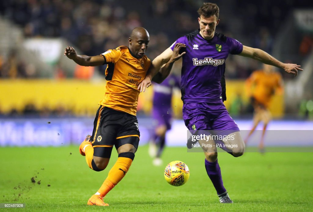 Wolverhampton Wanderers' Benik Afobe battles for the ball with Norwich City's Christoph Zimmermann (right) during the Sky Bet Championship match at Molineux, Wolverhampton.
