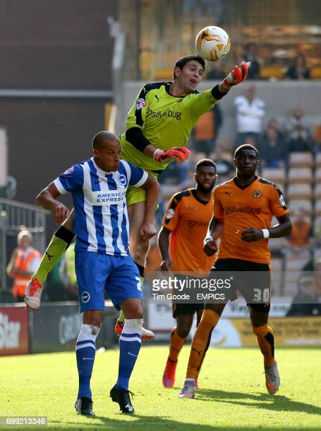 Wolverhampton Wanderers goalkeeper Emiliano Martinez jumps over Brighton and Hove Albion's Bobby Zamora to make a save