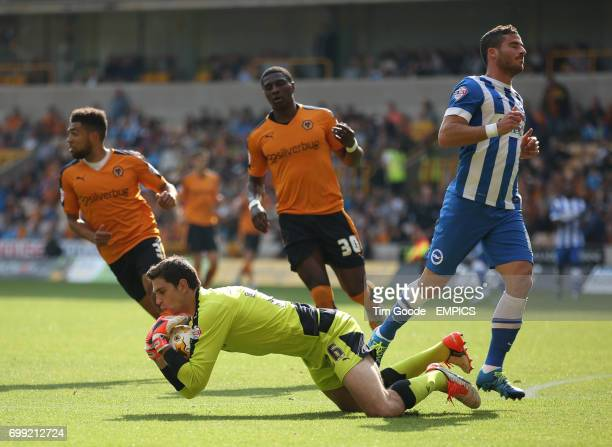 Wolverhampton Wanderers goalkeeper Emiliano Martinez saves a shot from Brighton and Hove Albion's Tomer Hemed